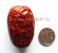 新疆大红枣