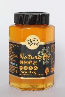 鸿香种蜂场 椴树蜂蜜 950g*12瓶