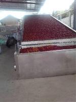 辣椒专用带式干燥机