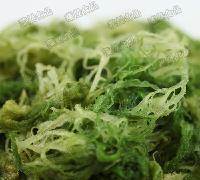 进口凤尾藻  350g/袋