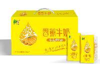 香蕉牛奶 新包装