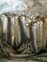 大连调味鱿鱼板珍味鱿鱼卷现烤鱿鱼丝加盟