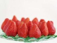 章姬草莓苗 大棚种植产量高 品种纯正包邮