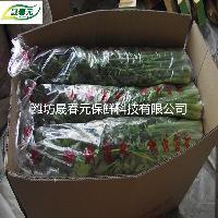 晟春元芹菜专用物理活性气调保鲜袋