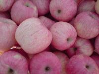 近期山东红富士苹果价格红富士苹果最新收购价格