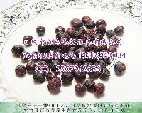 蓝莓冷冻干燥机