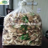 晟春元秀珍菇专用物理活性气调保鲜袋