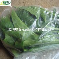 晟春元菠菜专用物理活性气调保鲜袋