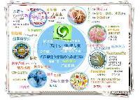 酵母味素粉