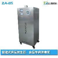 臭氧机 室内除甲酫去异味 空气净化器 臭氧消毒机