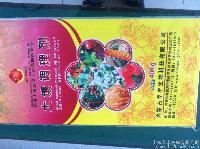 供应--福瑞年金黄版--土壤调理剂