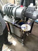 爱德华罗茨泵EH1200