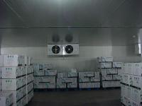 安徽冷库 专业冷冻库建造 免费设计测量 安徽孜润