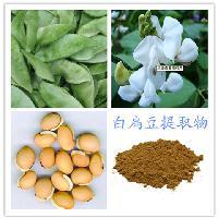 蓝莓粉 厂家 蓝莓酵素粉