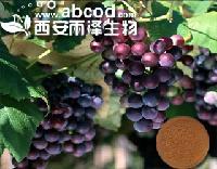 葡萄提取物生产厂家