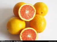 橙子提取物生产厂家浓缩汁粉