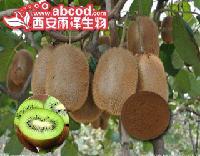 猕猴桃提取物浓汁缩粉生产厂家