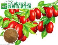 大枣浓缩汁粉提取物生产厂家
