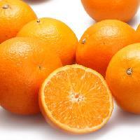 甜橙酵素粉