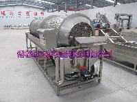 大豆清洗机 连续式葡萄干清洗机