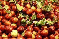 乐陵鲜红枣
