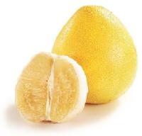柚子速溶粉品味纯正
