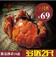 溱湖簖蟹六月黄鲜活螃蟹2.0-2.4两礼盒
