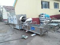供应华邦HB-800核桃饮料加工设备/核桃仁脱皮清洗设备