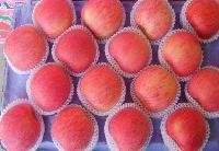 山东红星苹果大量上市了