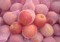 山东红富士苹果价格优惠