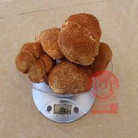 东北猴头菇干品厂家批发手工精选基地直供
