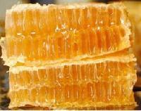 【自然封盖新巢蜜】纯天然野生蜂巢蜜批发真蜂窝蜜盒装