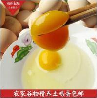 供应快农土鸡蛋