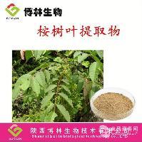 厂家直销 桉树叶提取物 兰桉叶提取物 治疟疾风湿痛 湿疹疥癣包邮