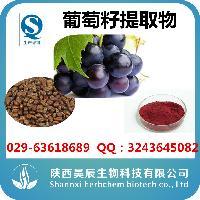 原花青素95% 葡萄籽提取物 天然抗氧化剂