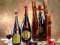 鹏远酒业一手货源法国进口葡萄酒洋酒批发团招代理经销商