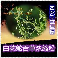 白花蛇舌草水溶粉厂家生产提取物