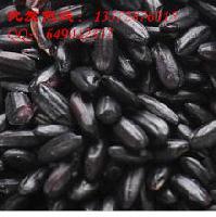 批发优质洋县黑米 原生态有机黑稻米 产地厂家直销