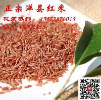 批发红米洋县红米糙米粥饭米补血米月子米适合大宗采购