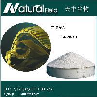 岩藻多糖85% Fucoidan  纯天然褐藻提取物