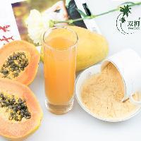 厂家直供 木瓜粉 无糖无添加  海南原料 烘焙专用木瓜粉