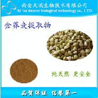 供应金荞麦提取物 Gold buckwheat extract