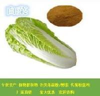 白菜提取物  白菜粉