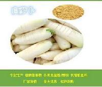 白萝卜粉    白萝卜提取物   白萝卜酵素