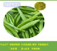 供应绿茶浸膏粉 绿茶浓缩汁粉  批发价格 大量库存