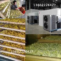 金凯菊花热泵烘干机 皇菊烘干机 黄菊干燥设备