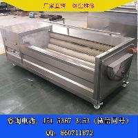 热卖新疆马铃薯毛刷清洗机
