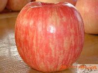 陕西洛川红富士苹果