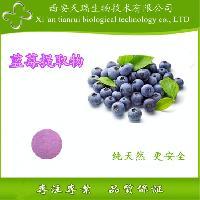 蓝莓纯粉  Blueberry pure powder
