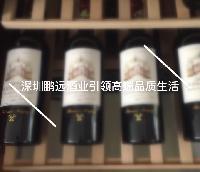 鹏远酒业原瓶原装进口葡萄酒一手货法国洋酒红酒批发团购招经销商